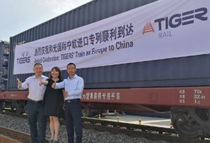 image: China Germany Tigers FCL LCL freight containers rail cargo hub