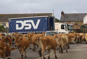 image: DSV road haulage part load groupage Poland UK freight logistics