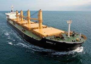 image: US Germany dry bulk shipping Eagle Surpramax Handymax Jan-Philipp Rauno Hamburg Singapore