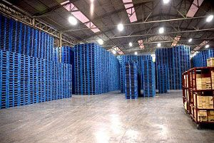 image: Canada supply chain Chep safest employer blue pallets