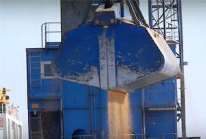 image: UK, arbitration, Court, Eternal Bliss, shipping, dry bulk, tanker, consignment, soya bean, K Line,