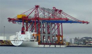image: India port freight olive Ridley turtle Dhamra tonne ship dry bulk break containerized rail shipping container