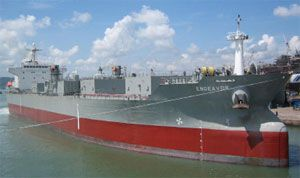 image: US dry bulk drybulk shipping line vessel ships carrier