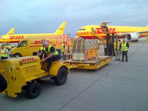 image: DHL SME freight and logistics express overseas trade international Schiphol