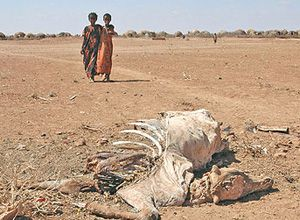 image: Somali Famine Luxembourg freight logistics airfreight cargo