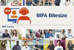 image: UK, BIFA, freight, forwarders, customs, procedure, codes, logistics, inline, training, virtual, sessions,