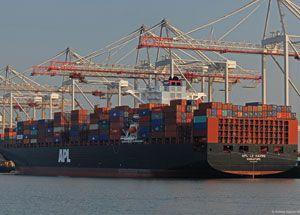 image: Ireland Botany Bay Patrick container terminals Sydney airport bespoke crane ship to shore Brisbane Adelaide
