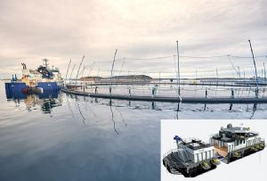 image: Norway, cod, farming, environmental, salmon, wrasse, pollution, disease, service boat, hybrid, feed, barge, Norcod, ABB,