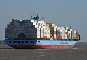 image: Maersk line container shipping CKYHE Alliance COSCO, K Line, Yang Ming, Hanjin Shipping Evergreen job cut staff