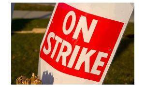 image: Strike, Ireland, Dublin, Peel Ports, BG Freight Lines, Marine Terminals, Brendan Gold,