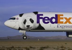 image: Philippines logistics freight forwarding licence Court FedEx
