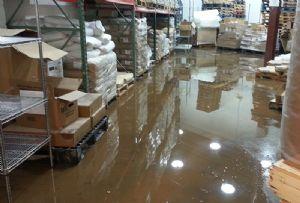 image: UK, freight, forwarding, logistics, lockdown, storage, good, in transit, warehouse, insurance, Peter, Lole,