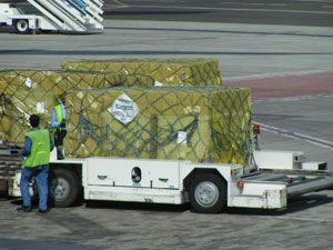 image: IATA air freight traffic cargo load factor