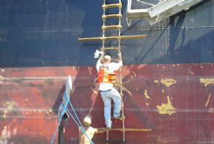 image: Australia, crewman, seafarer, died, fatal, accident, Formosabulk Cement, Mooloolaba, ITF,
