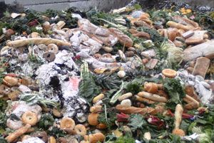 image: US cold supply chain food waste environmental obscenity charity Carrier UTC