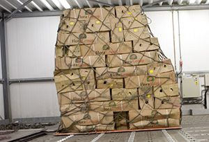 image: IATA air freight cargo capacity International Air Transport Association tonne kilometres