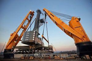 image: cranes