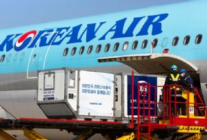 image: WorldACD, air, freight, cargo, wide bodied, aircraft, rates, kilogramme,