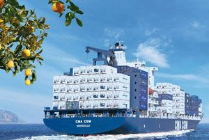image: Syria Turkey container shipping line reefer box citrus fruit CMA CGM shippers exporters