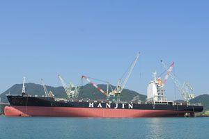 image: Ho Chi Minh Vietnam container shipping TEU box ships Evergreen Hanjin Korea China Singapore Malaysia