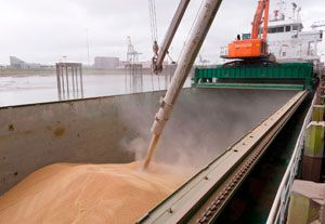 image: UK port Tilbury shipped export importer tonnes feed wheat agriculture grain terminal