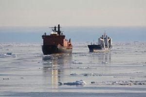 image: Polar