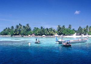 image: Maldives Sri Lanka freight forwarder shipping consolidation port groupage