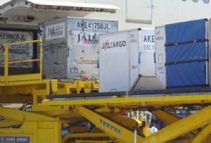 image: IATA, data, air freight, cargo, Willie, Walsh, tonnes,
