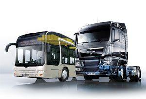 image: MAN Daimler freight truck trucks infrastructure