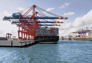 image: Weiss-R�hlig freight forwarding chimera Gebr�der Weiss R�hlig Logistics