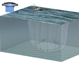 image: France Tuna fishing fleet tracking buoys Thalos Orolia seine net whale shark dolphin turtle