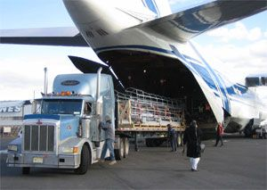 image: freight, air, load, IATA, Bisignani, traffic, schedule, factor, oil, price, transport, cargo
