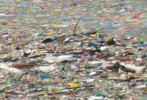 image: UN Group for Sustainable Ocean Business Lloyd�s Register ship plastic fish