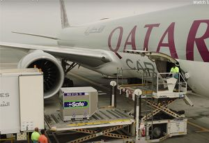 image: Qatar airlines cargo freighter air freight isolation diplomatic Boeing 777 Arab