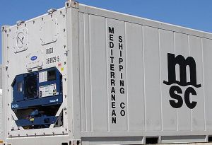 image: MSC reefer boxes refrigerated containers dry cargo Carrier Transicold ethylene