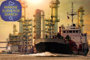image: UK IIMS International Institute of Marine Surveying (IIMS) vessel owners P&I Clubs