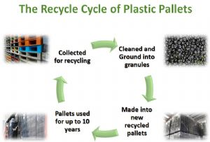 image: UK Exporta Plastic Expert pallets recycling free supply chain materials handling packaging